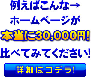 例えばこんなホームページが本当に30000円から!比べてみてください